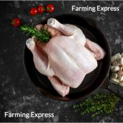 Buy Chicken Meat Online